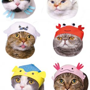 Here are all the different cat caps you may randomly receive.