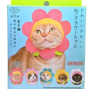 Kitan Club Flower Cat Cap